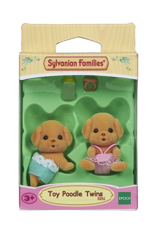 Toy-Pudel Zwillinge